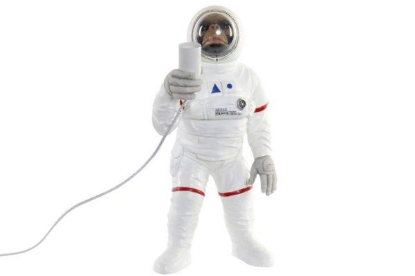 Singe cosmonaute